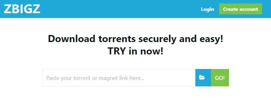 Download Torrent ZBIGZ With IDM Software